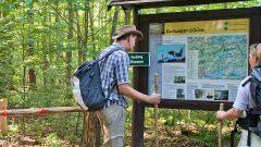 Wanderer an einer Infotafel im Müritz-Nationalpark