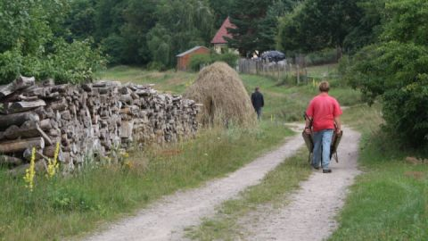 Alter Pilgerweg in Wustrow